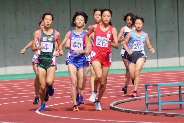 女子800m 田中 彩織